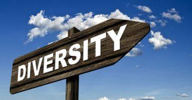 diversity_formatiert